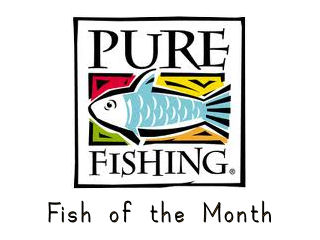 Pure Fishing Fish of the Month